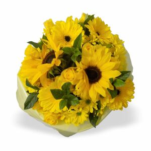 Yellow Bunch MED